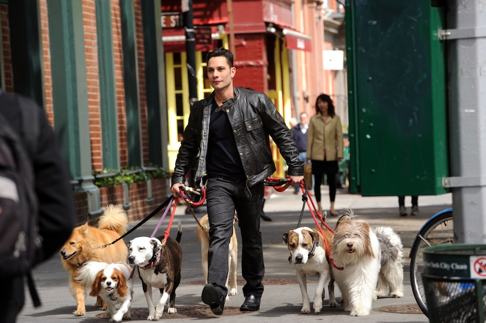 New York City dog guru Justin Silver is the host of DOGS IN THE CITY premiering Wednesday, May 30 (8:00-9:00 PM, ET/PT) on the CBS Television Network.Photo: Heather Wines/CBS ©2012 CBS Broadcasting Inc. All Rights Reserved.