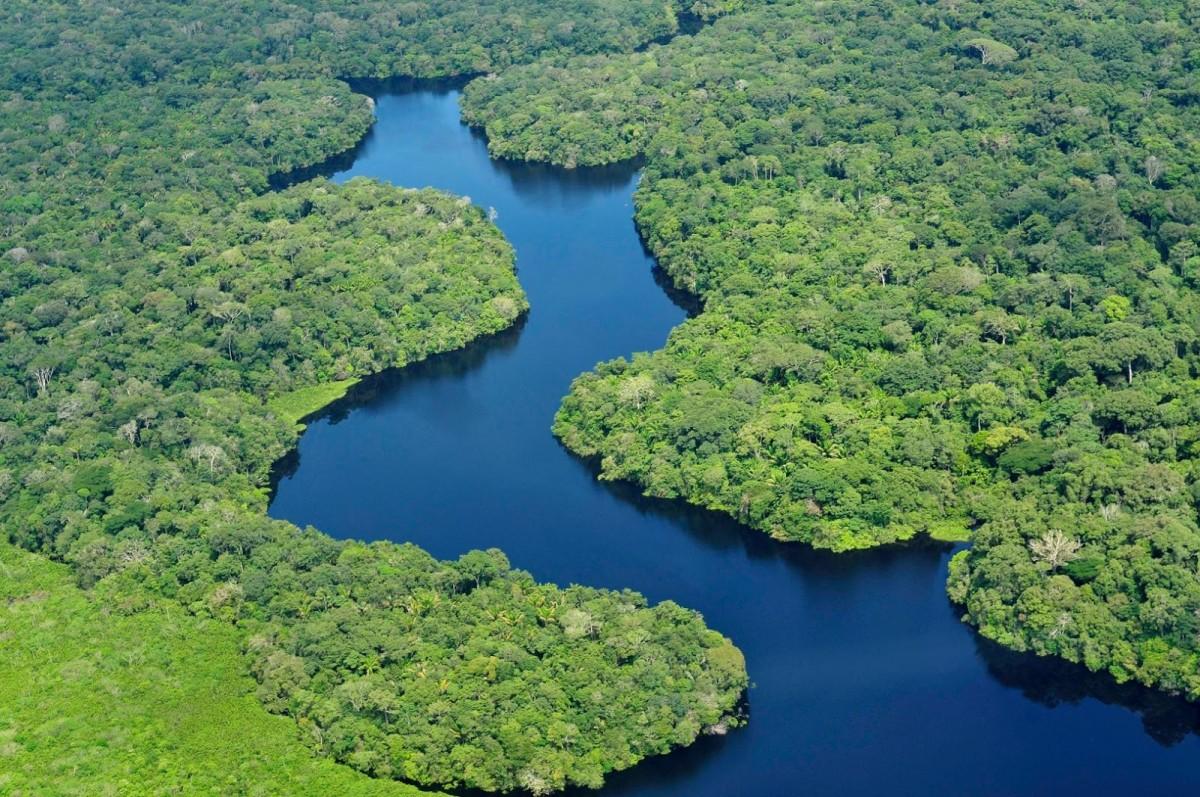 man man brazilian rainforest