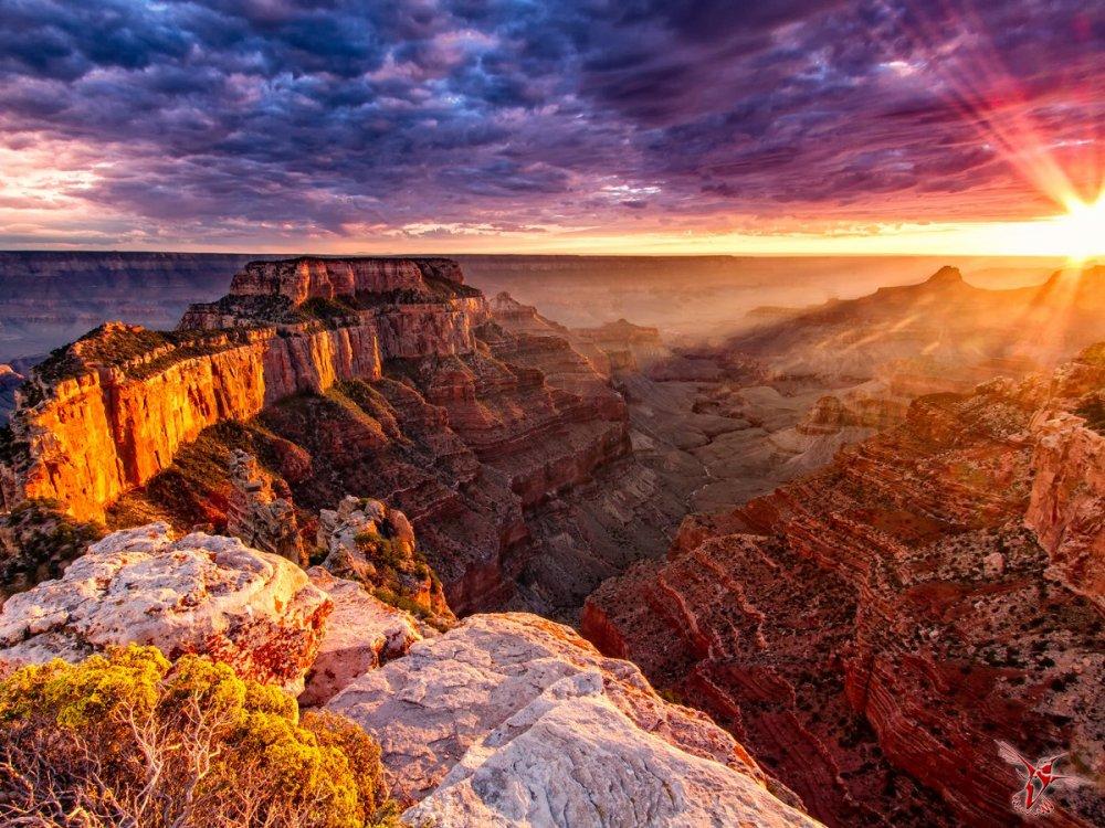 man man grand canyon