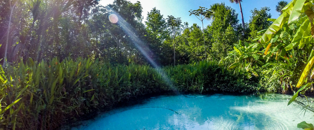 Dit natuurlijk zwembad is beter dan een infinty pool - Natuurlijk zwembad ...