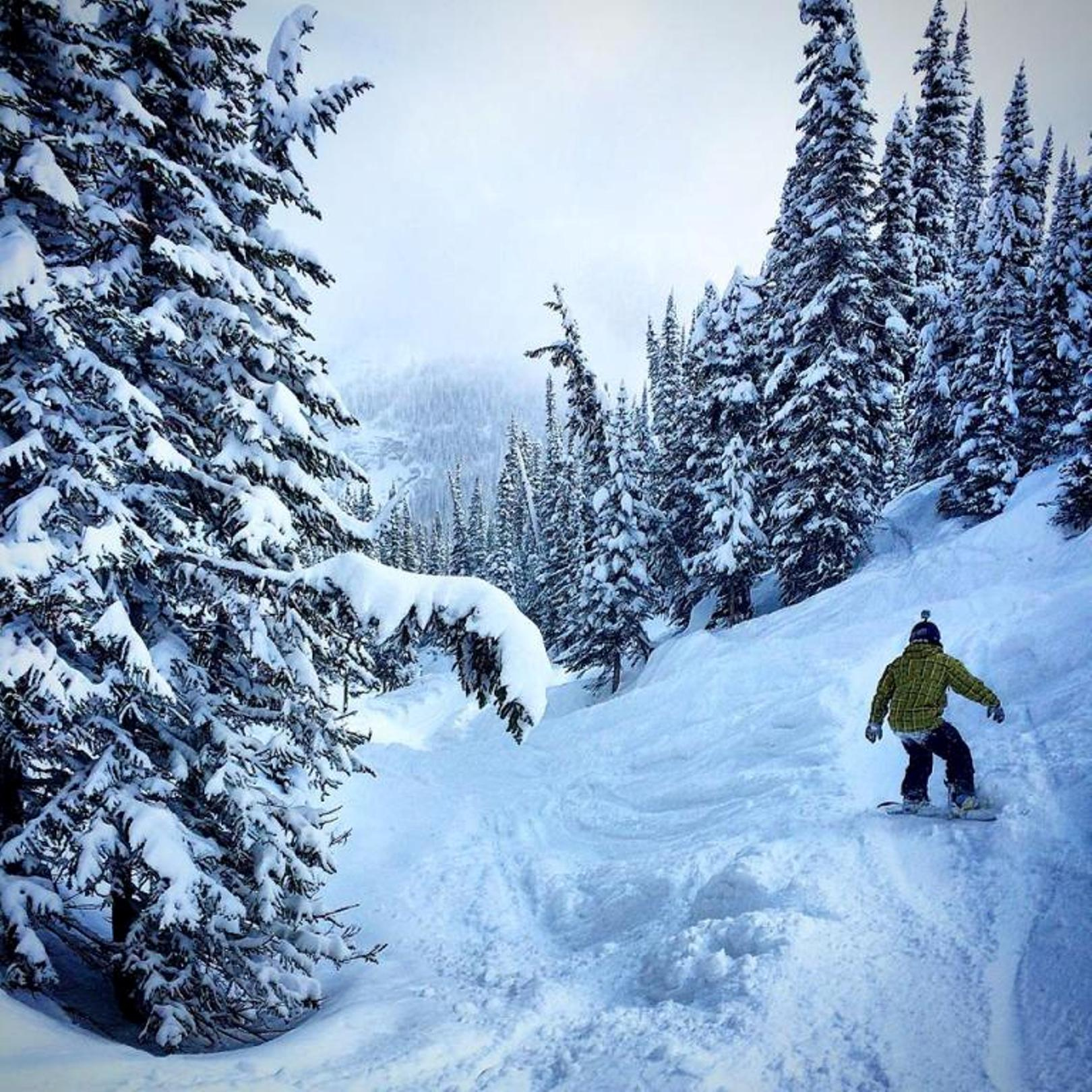 This photo was taken at Sunshine Village Ski & Snowboard Resort in Banff, Alberta, Canada, after a 39 cm snowfall.