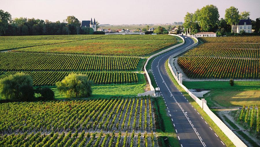 wijnroutes-frankrijk-manman.00_jpg_srz