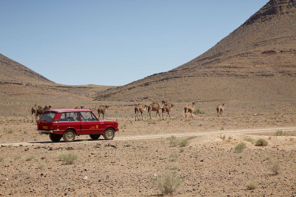 range rover velar 1969 man man 5