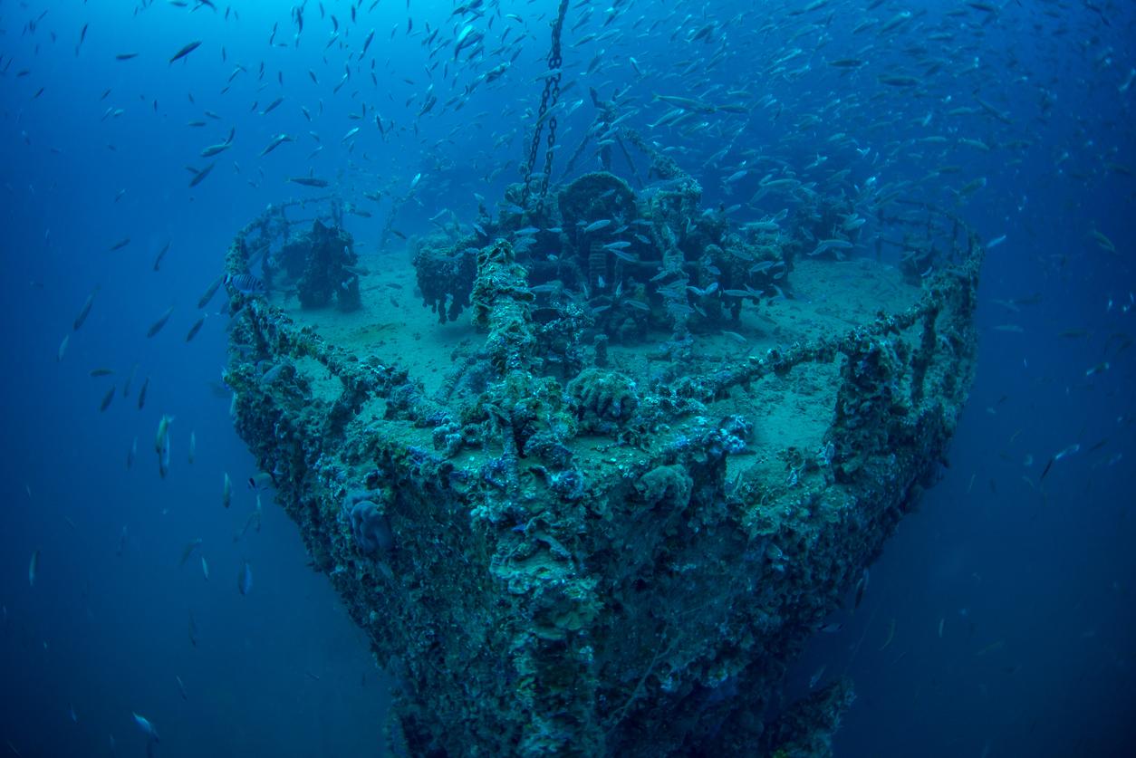Wreck of Steamship Vis