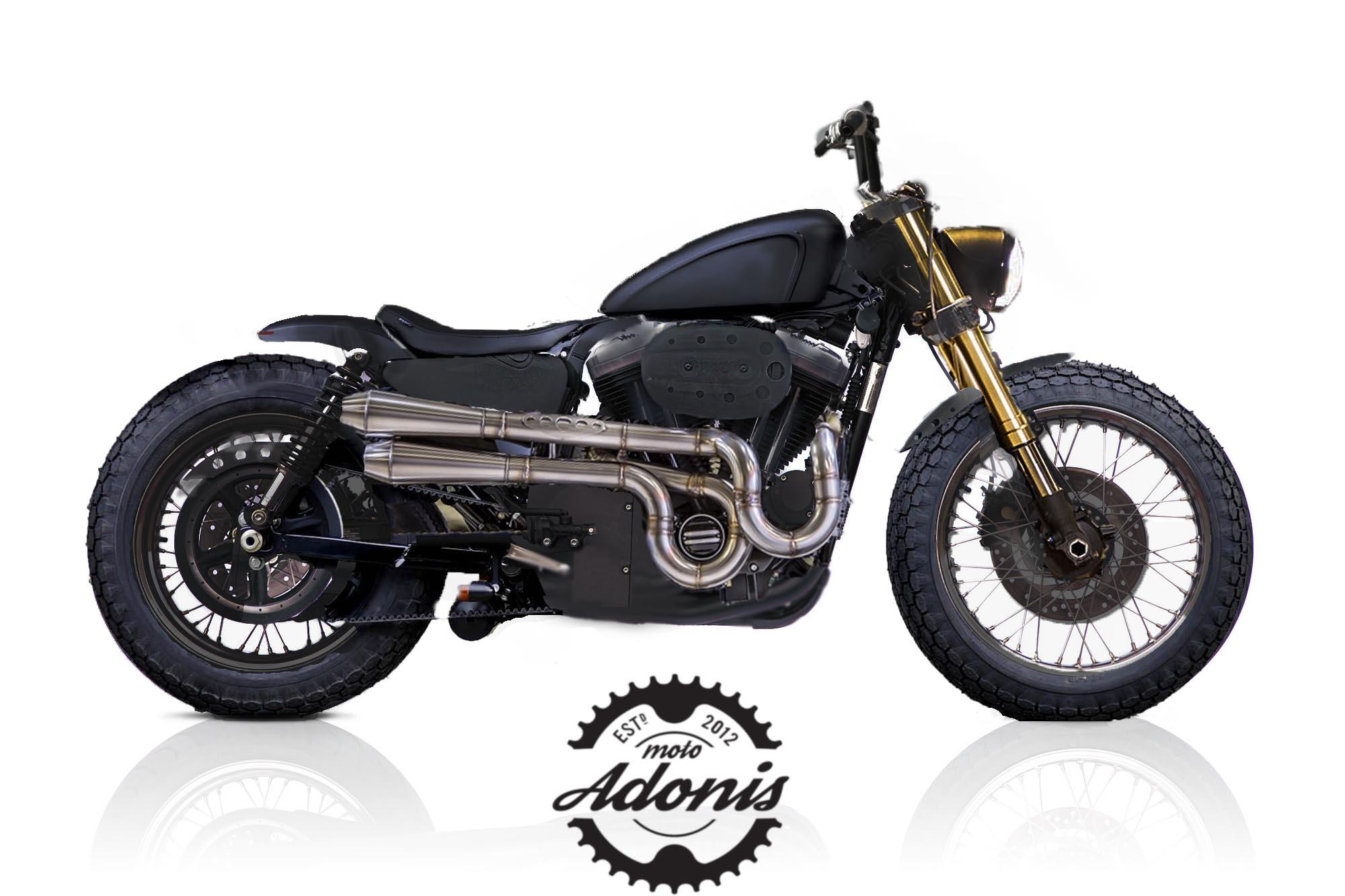 moto adonis harley davidson MAN MAN