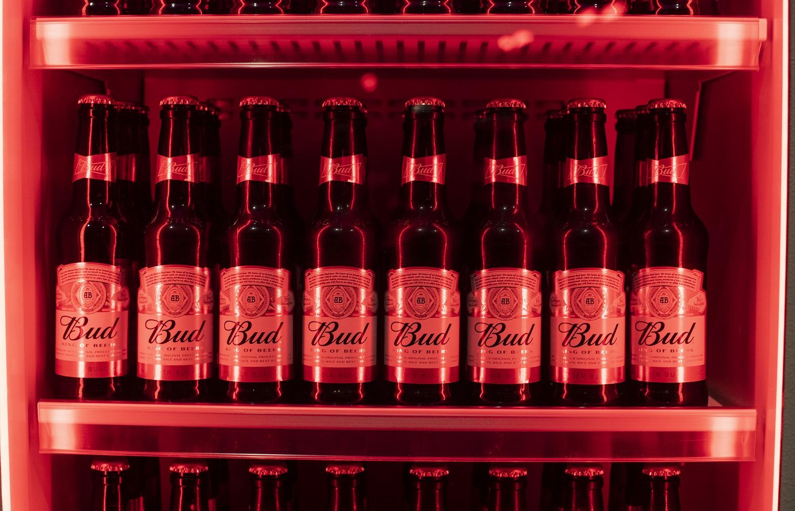 Bud bier Nederland
