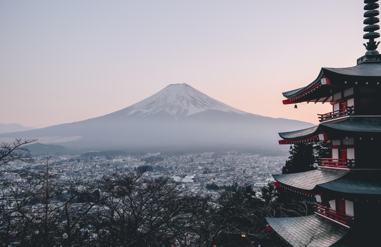 Japan Health