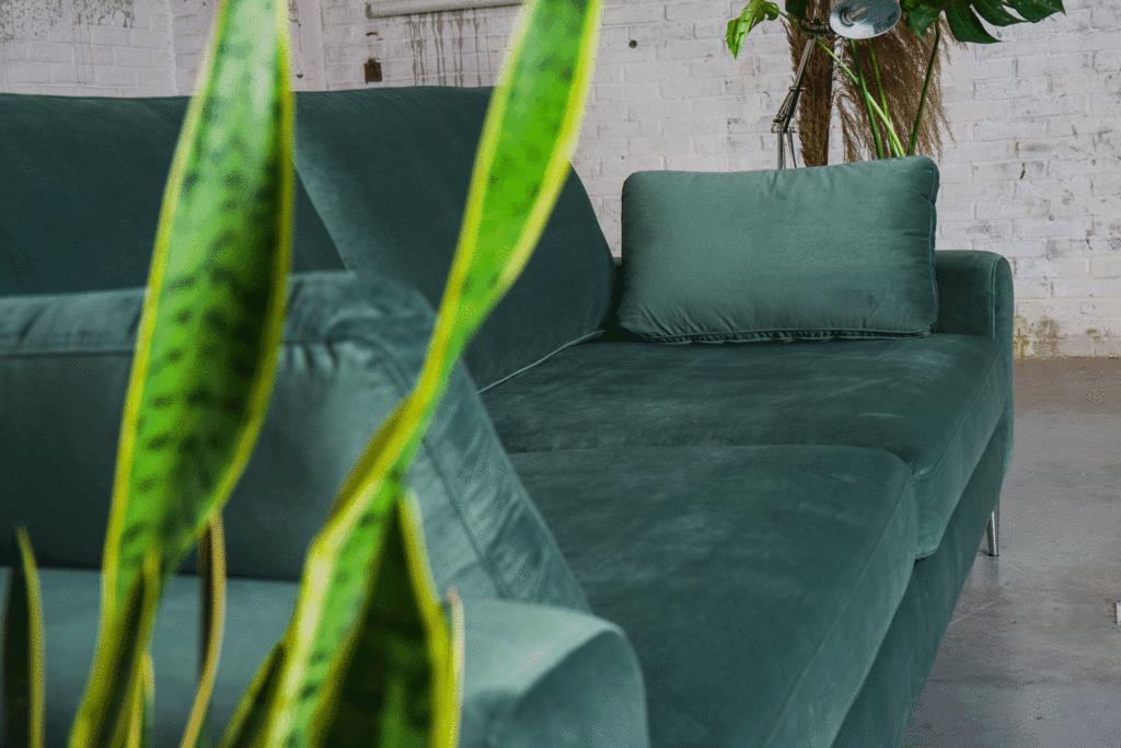 fluwelen meubels