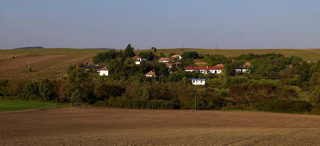 Deze Nederlandse baas koopt een dorp op voor een festival in Hongarije