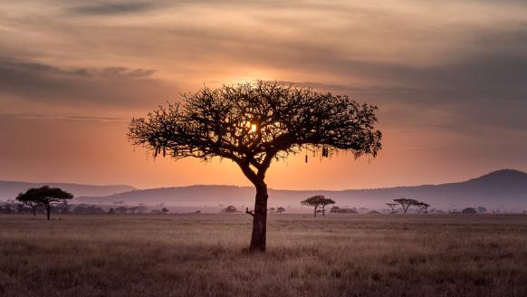 Dit is de ultieme reisroute door Zuid-Afrika