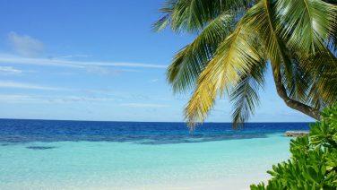 Vakantiedagen verdubbelen in 2020: zo heb je 2 keer zoveel vrij