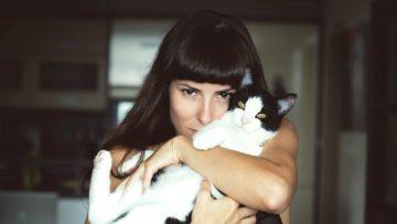 Met deze katten verover je (bijna) elk vrouwenhart