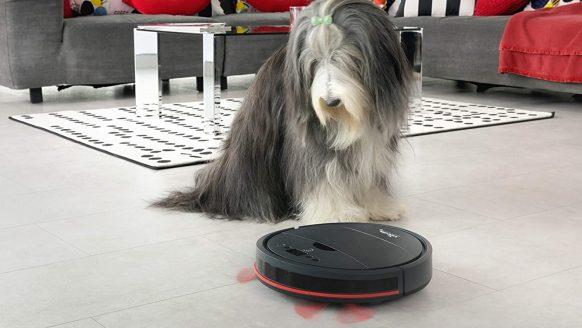 Nu te koop bij de Lidl: robotstofzuiger speciaal voor (luie) mensen met huisdieren