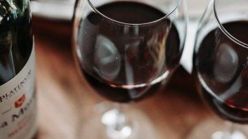 Zelf wijn maken: met deze zeven stappen gaat het lukken