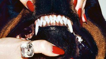 Wittere tanden binnen 4 stappen