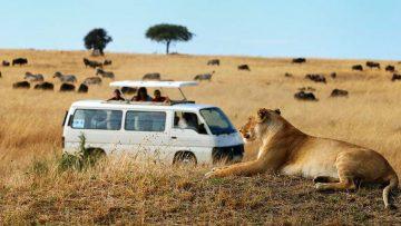 De mooiste roadtrips in Afrika