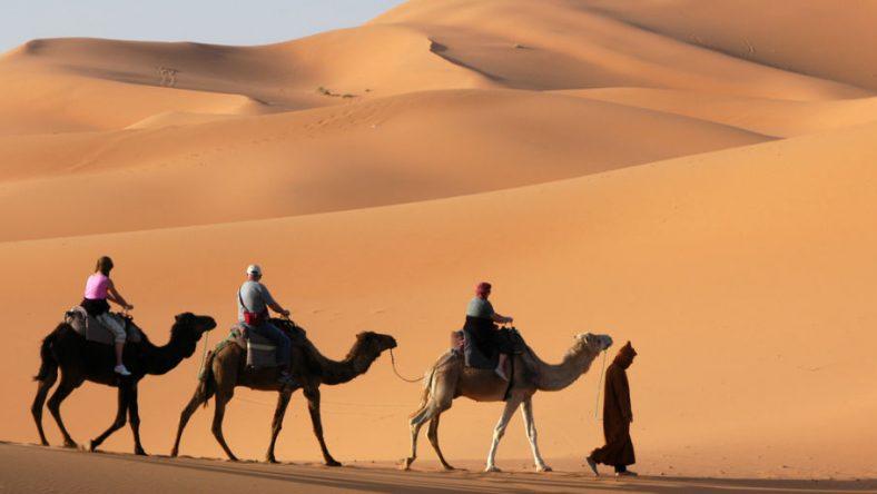 Reislust #9: Hobbelend op een kameel door de woestijnen van Marokko
