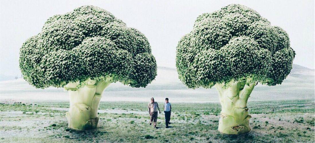 Deze 18 jarige kunstenares maakt de tofste surrealistische kunst