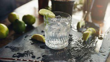 Onderzoek wijst uit: Gin en Vodka verlichten hooikoortsklachten