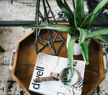 Zo houd jij je planten in leven
