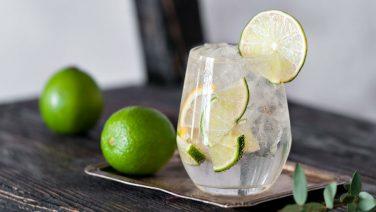 De droombaan: 80 dagen de wereld rond reizen en gin drinken