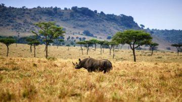 De mooiste onbekende nationale parken ter wereld